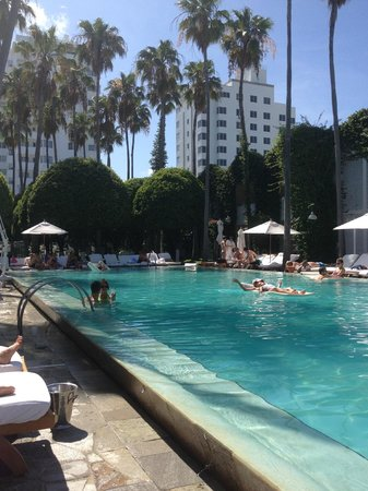 Delano South Beach Hotel: The pool area is the best!