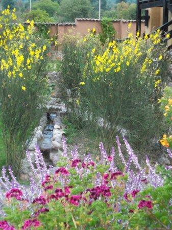 Tierra Viva Valle Sagrado Urubamba: Tonos de amarillo