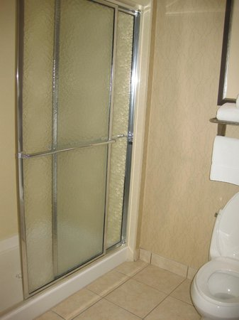 Homewood Suites by Hilton McAllen: Bathroom