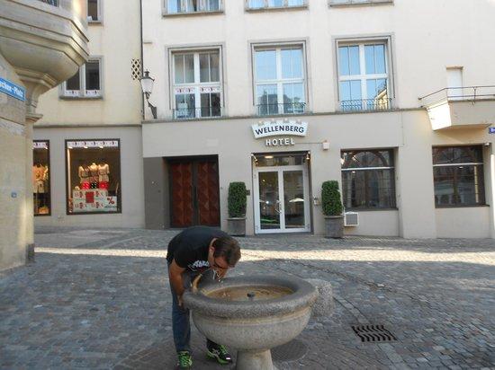 Hotel Wellenberg: Essas fontes de águas potáveis são demais
