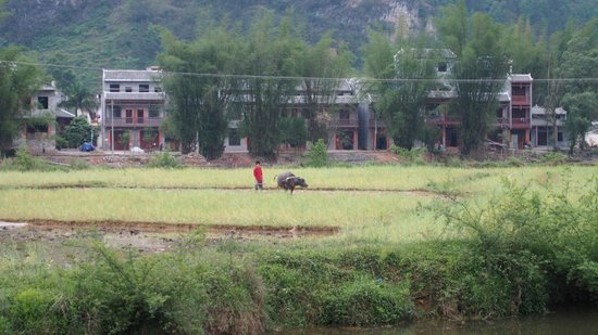 Yangmei Ancient Town of Nanning: farming the old traditional way