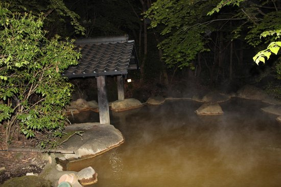 旅館 新清館, Open-air bath in the evening