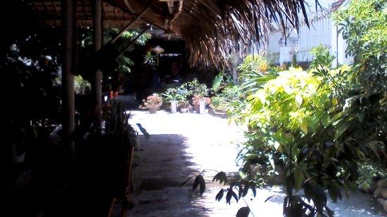 Bon Bon Restaurant : the yard 2