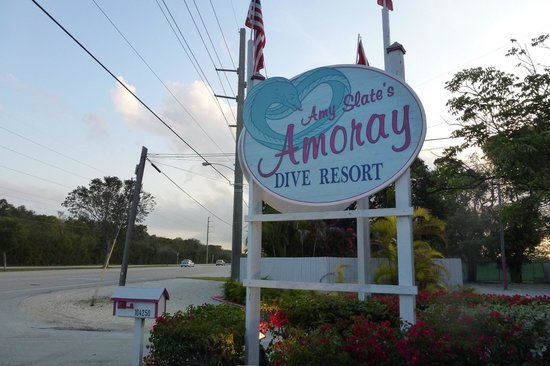 Amoray Dive Resort: The promising sign