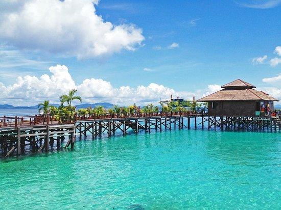 Pristine snorkelling condition picture of sipadan water village resort pulau sipadan - Sipadan dive centre ...