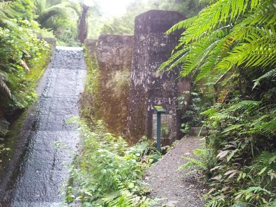 Waterworks Walk: Old reservoir dam at Ngaruawahia 10min from Huntly