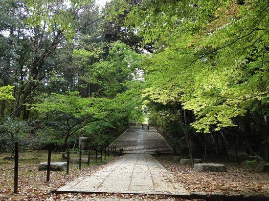 Komyoji Temple: 門から長く続く石段
