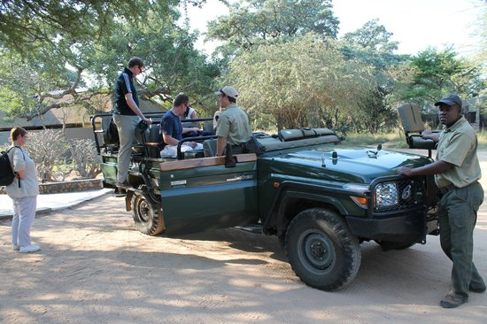 Jackalberry Lodge : En safari