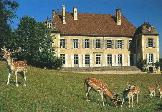 Château de Moidiere