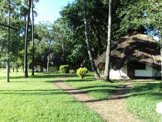 Palm Beach Leisure Resort: Eco hut accomodation
