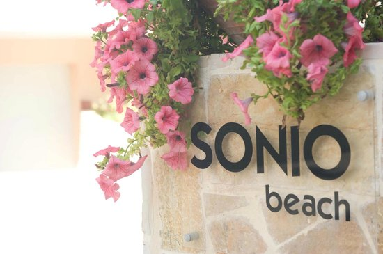 Sonio Beach Apartments : The Place.