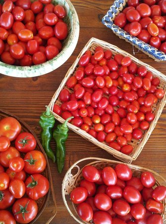 Monte degli Aromi: le nostre verdure bio