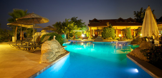 Hotel Grenadine Lodge: Poolside