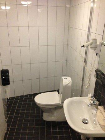 First Hotel Fridhemsplan: Bagno
