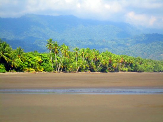Costa Rica Dive and Surf: Boat launches from Uvita beach