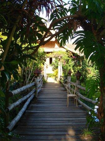 Villa Escudero Resort: A nice walkway
