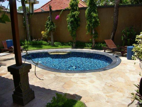 Parigata Villas Resort: Villa-Pool