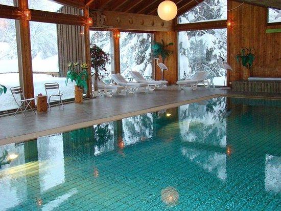 Hotel Alpina & Savoy: Piscine
