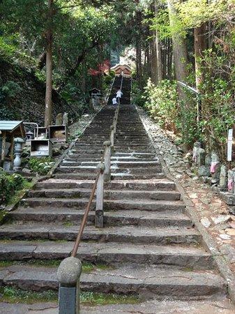 Shoryuji Temple: 長い階段が続きます