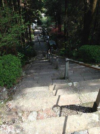 Shoryuji Temple: 階段を上から撮影