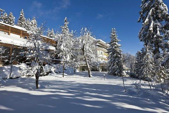 Hotel Alpina & Savoy : Extérieur