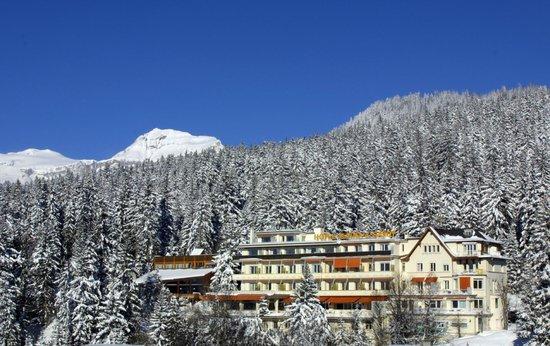 Hotel Alpina & Savoy : Hôtel