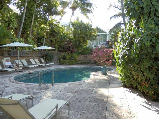 Marquesa Hotel: Pool