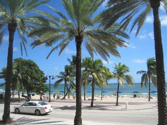 Fort Lauderdale Beach Resort: Der Strand direkt vor der Tür