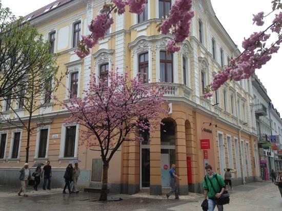 Žilinský kraj, Slovensko: май в Жилине