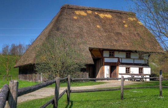 Schwabisches Bauernhofmuseum Illerbeuren: Reeddach