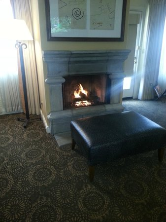 Fairmont Scottsdale Princess: Fireplace
