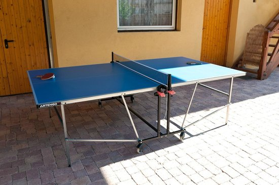 Les Gites de l'Orchidee du Ried : Table de ping pong à disposition