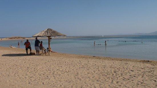 Sheraton Soma Bay Resort: spiaggia