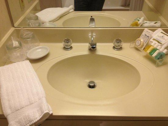 Cincinnatian Hotel: Vanity