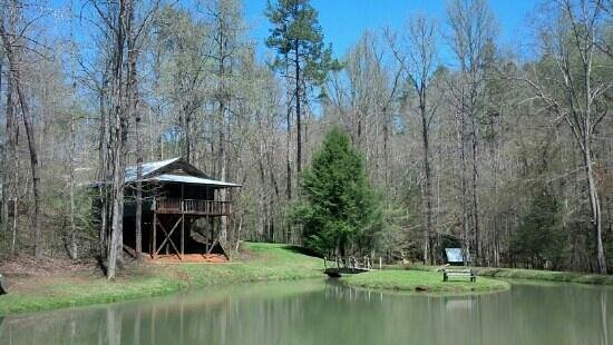 Cavender Creek Cabins Resort: View of pond and cabin 8. April 12, 2013