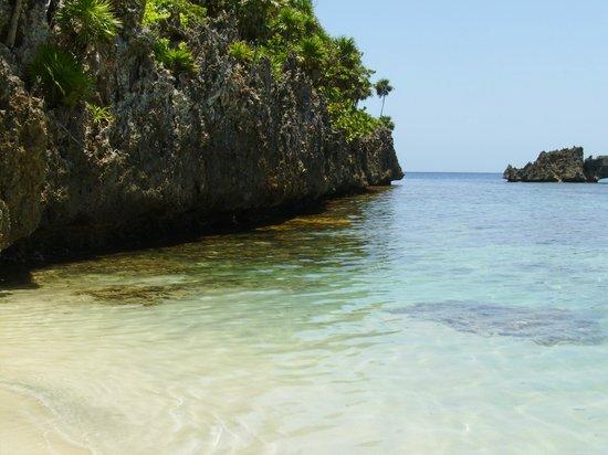 Area de corales
