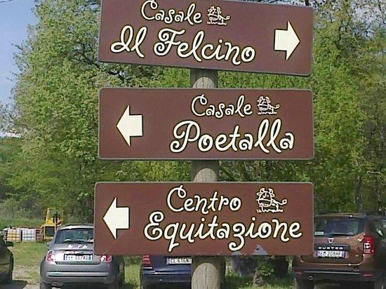Agriturismo Il Felcino: Indicazioni esterne