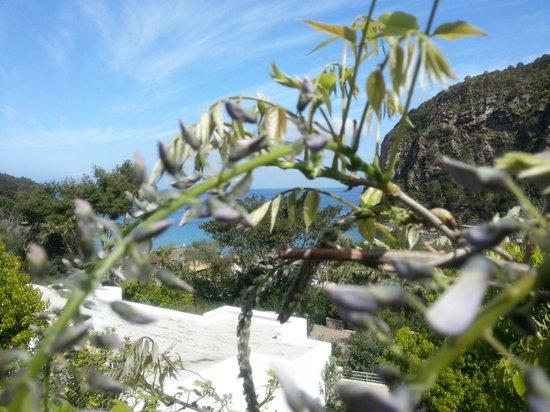 Hotel Terme San Lorenzo: Il golfo nella natura