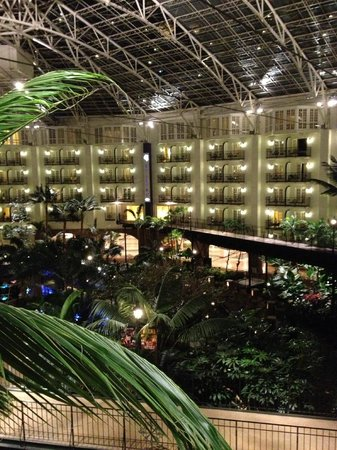 Gaylord Opryland Resort & Convention Center: The View from room C4049
