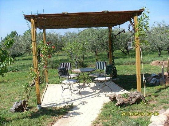 espace d tente jardin photo de les yuccas du mitan la motte tripadvisor. Black Bedroom Furniture Sets. Home Design Ideas