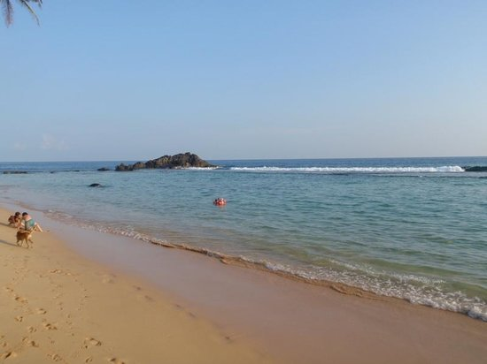 Sergeant House: Wijaya Beach