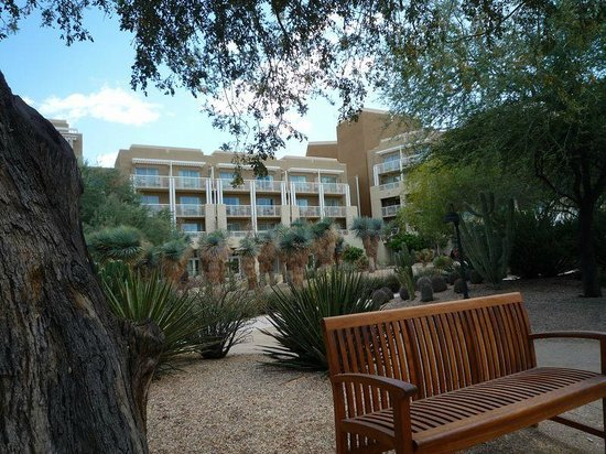 JW Marriott Phoenix Desert Ridge Resort & Spa: In the Gardens