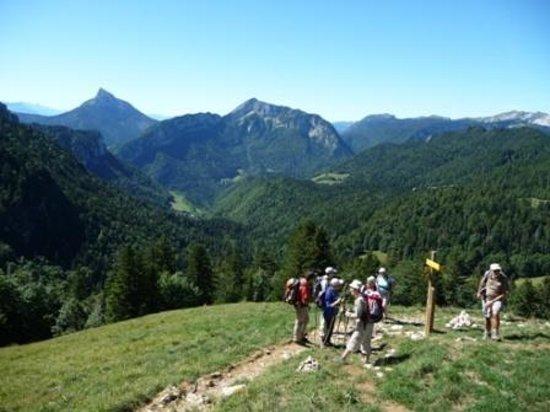 Au Pas de L'Alpette: nature et découverte en chartreuse