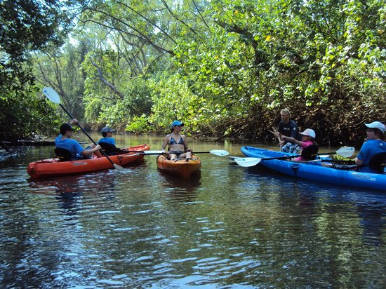 Costa Rica Surfing Company: River Kayaking Adventure