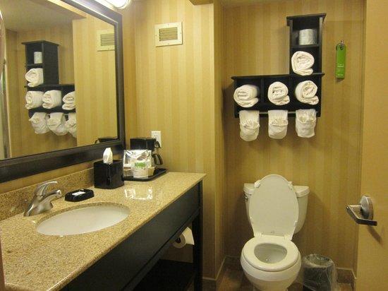 Hampton Inn Pensacola Airport (Cordova Mall Area): bathroom