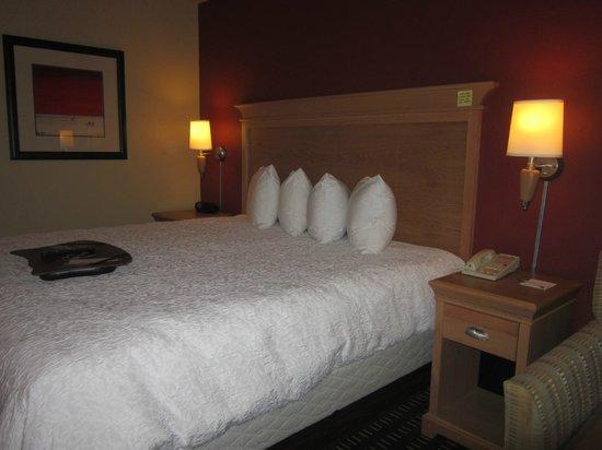 Hampton Inn Pensacola Airport (Cordova Mall Area) : bed