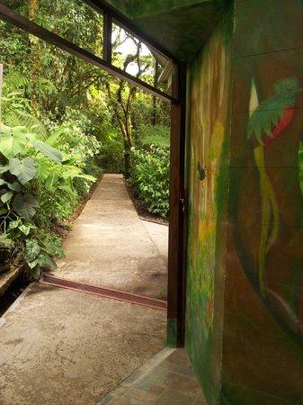 Reserva Bosque Nuboso Santa Elena: Entrada a los senderos / Entrance to the Trails