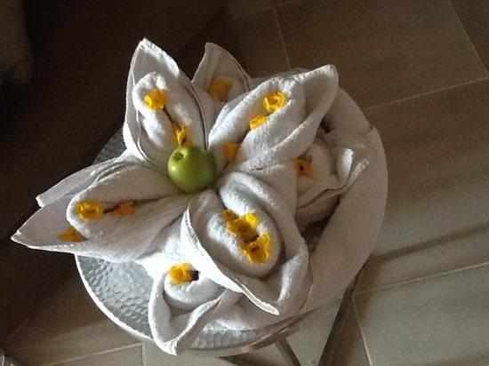Coral Sea Aqua Club Resort: towel art cant wait to go back!