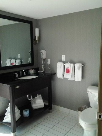 Ramada Plaza Niagara Falls: 1st look at bathroom