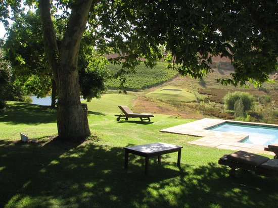 Alluvia Wine Estate: The pool
